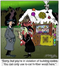 An inspector saying to a witch in front of a gingerbread house, 'Sorry, but you're in violation of building codes. You can only use lo-cal hi-fiber wood here.